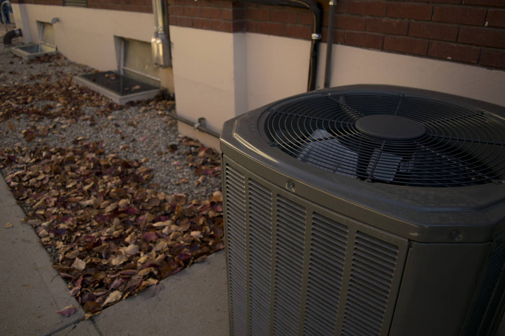 Leaves near an air conditioner condenser unit